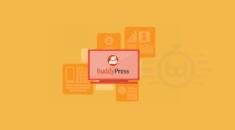 Topluluk Siteleri için 21+ En İyi BuddyPress Eklentisi